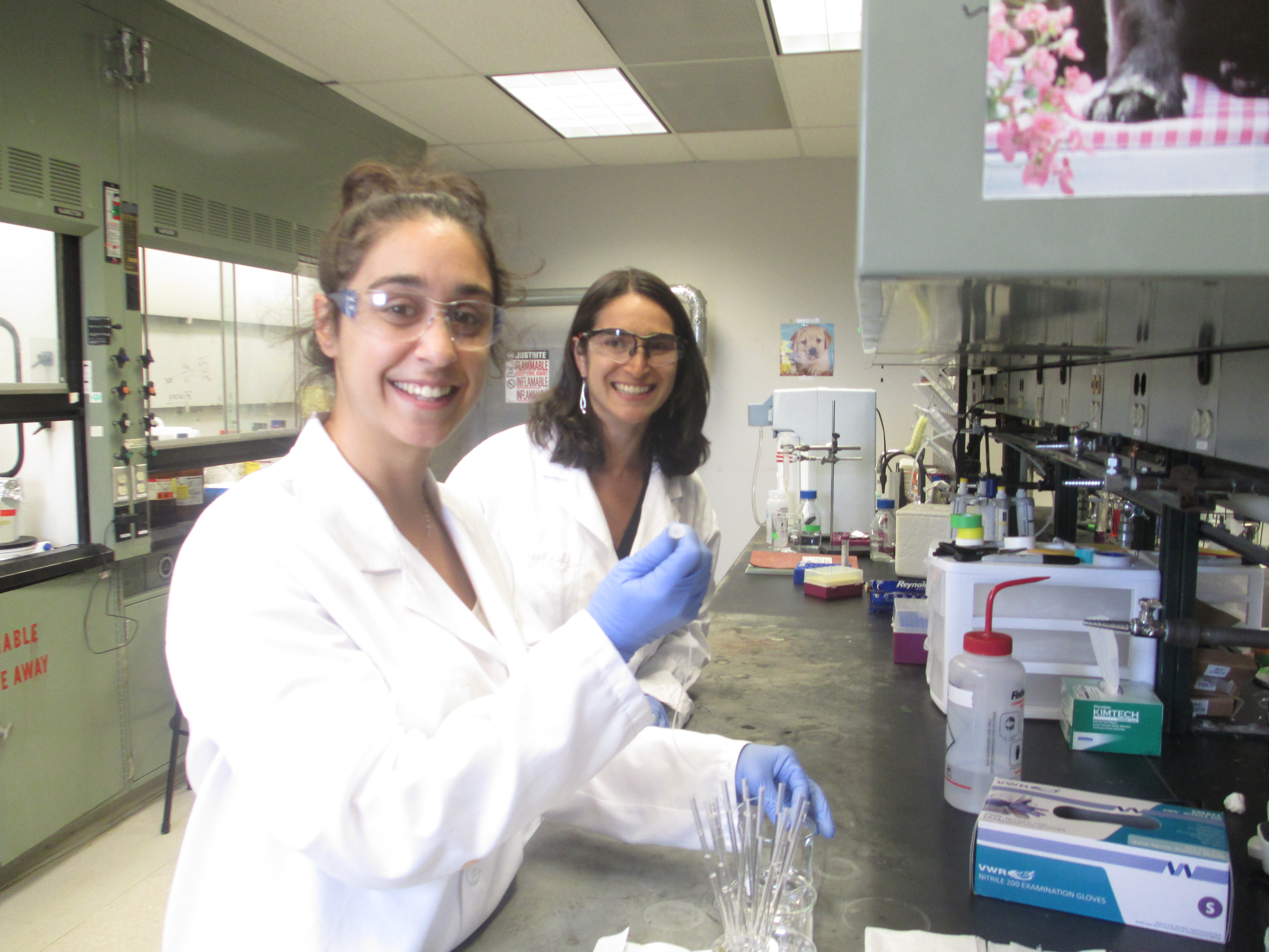 Members of OSBP in the lab